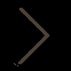 next-right-left-icon-no-circle